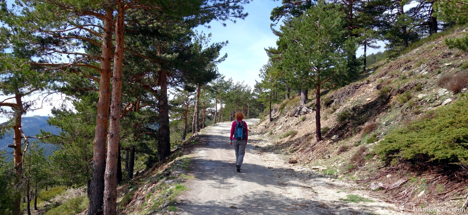 Path to the Collado de Marichiva