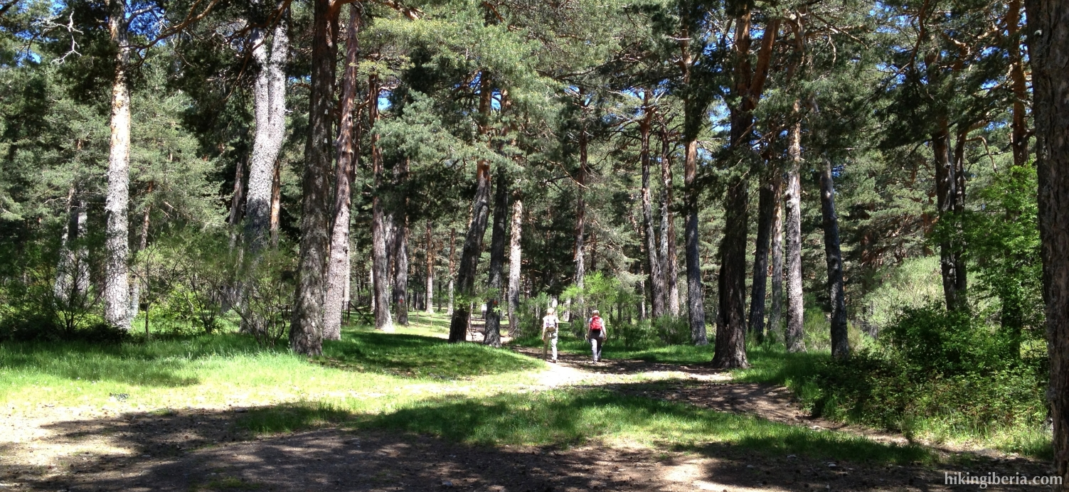 Camino Viejo de Segovia