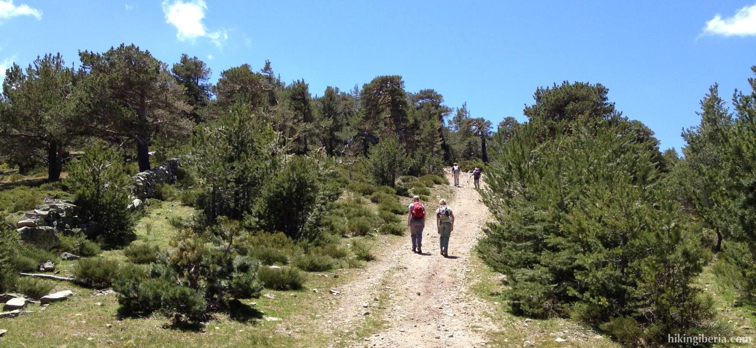 Subida al Cerro Peña del Águila