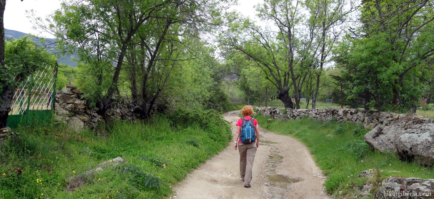 Trail through the Dehesa de Abajo