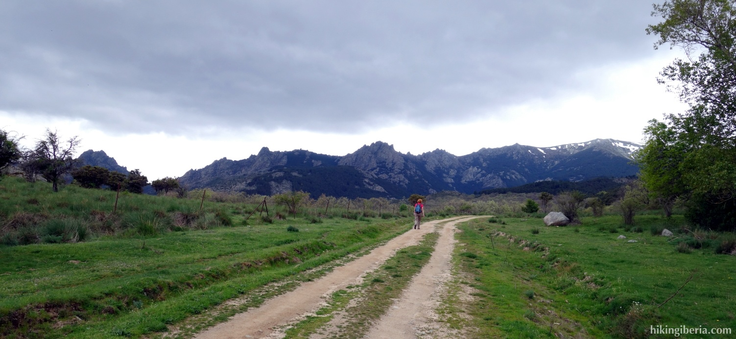 Trail through Los Eriales