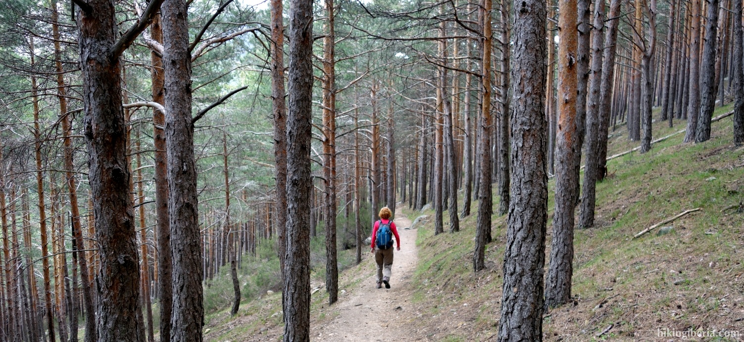 Descent towards the Mediano Arroyo