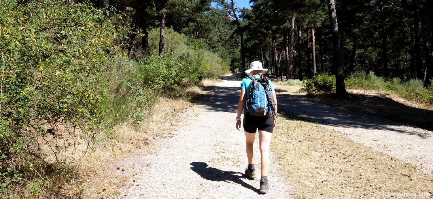 Pad naar de Romeinse Weg van la Fuenfría