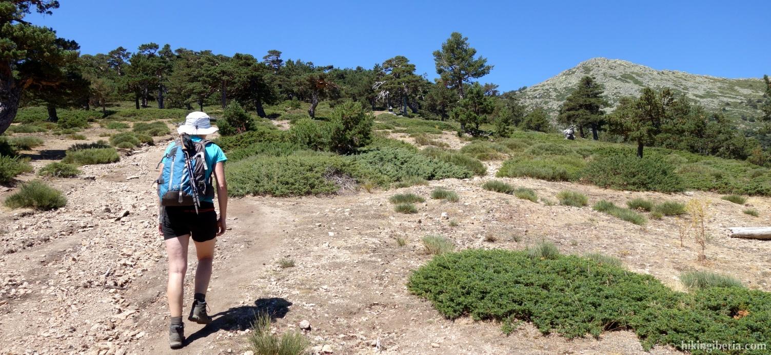 Near the Pass of la Fuenfría