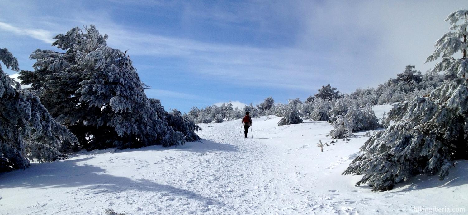 Climb to the Peñalara (February 2013)