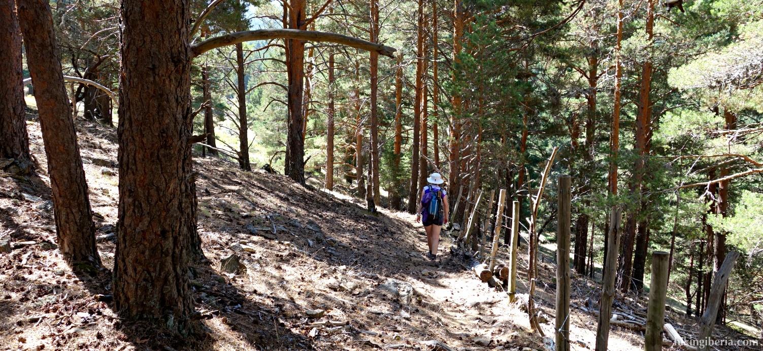 Trail to the Collado de Río Peces