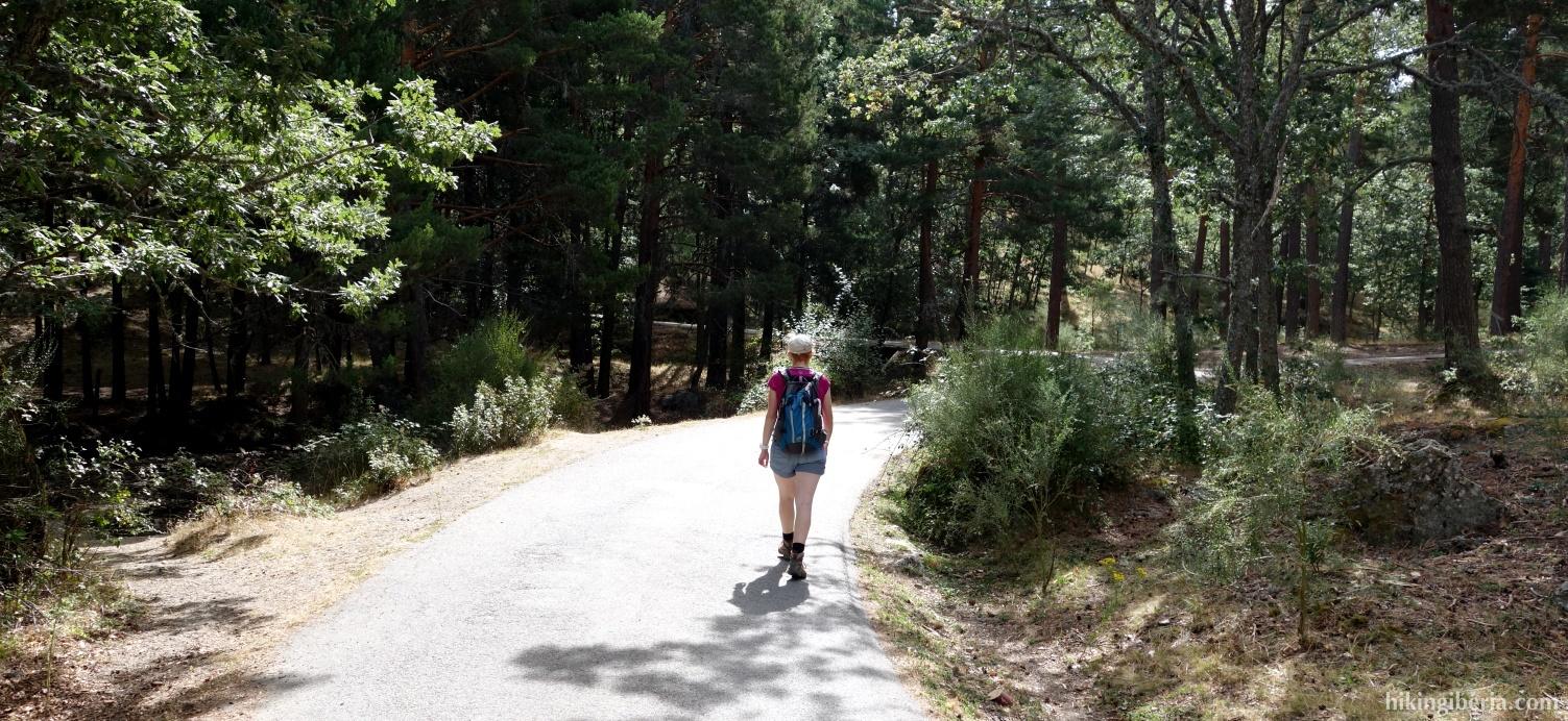Trail near La Pradera de Navalhorno