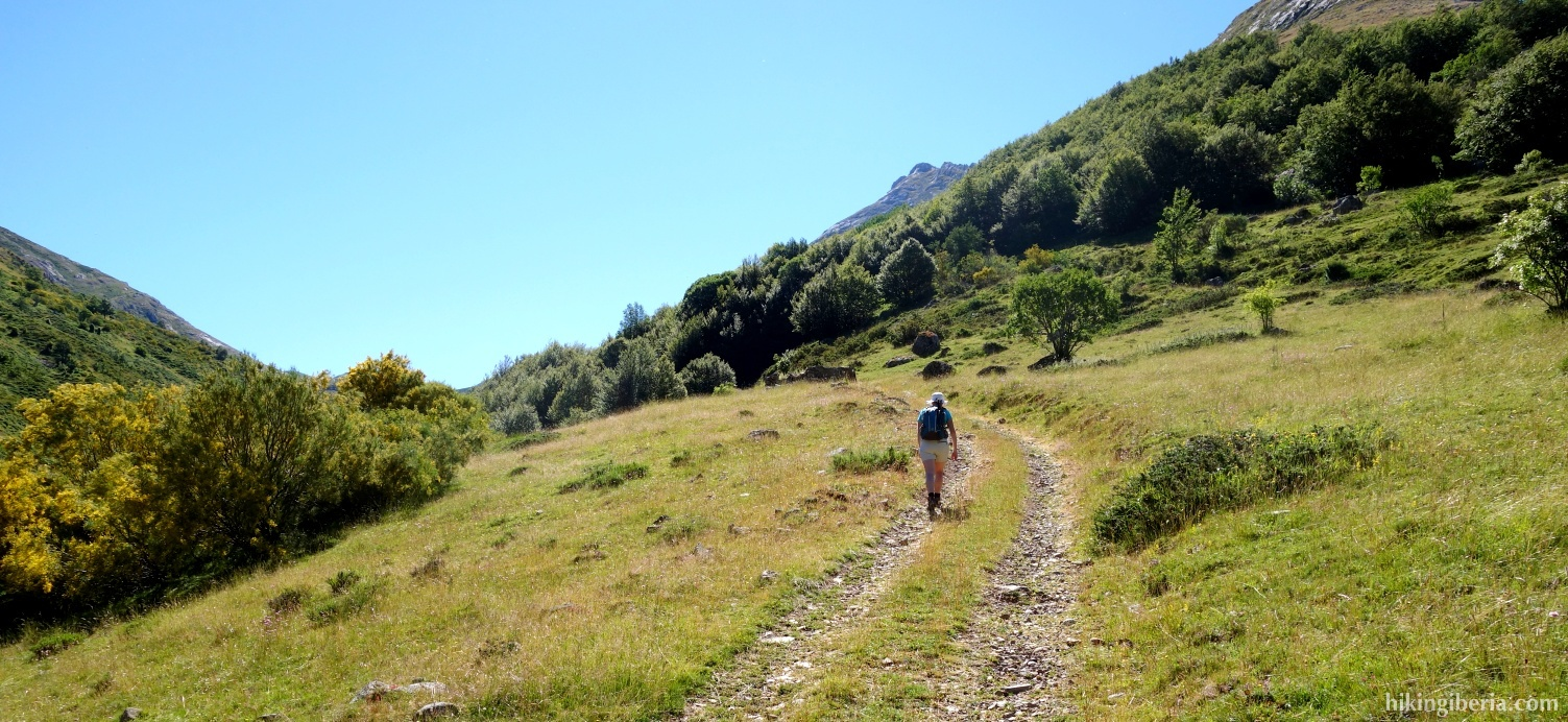 Trail in the Valley of Luriana