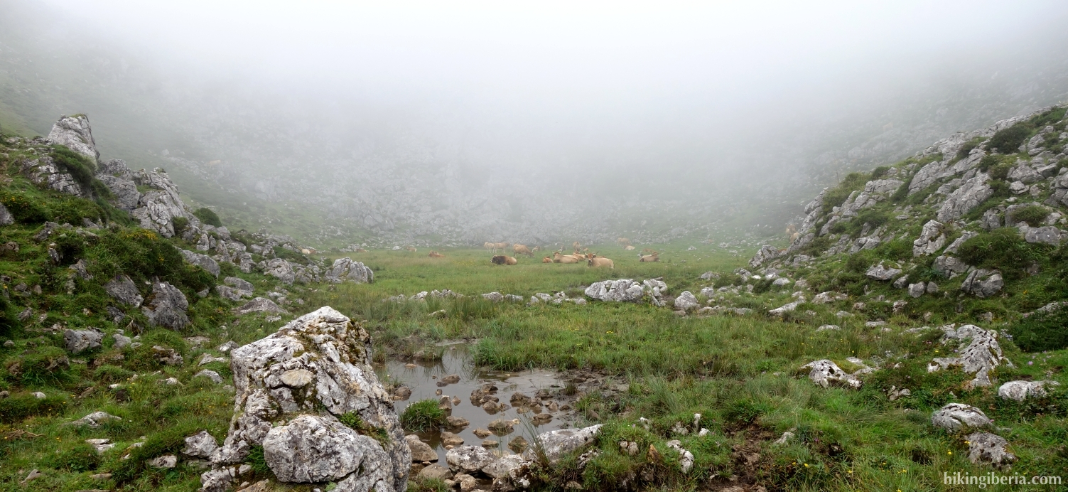 Pad naar de Lagos de Covadonga