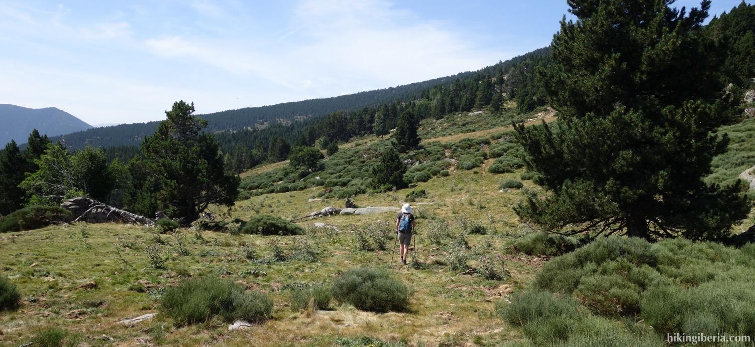 Trail to La Balmette