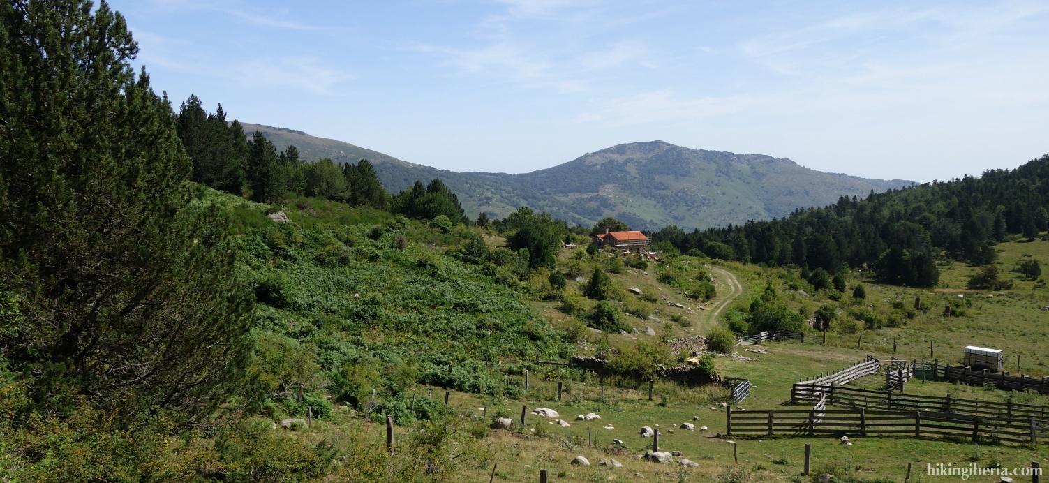 Pfad in der Nähe der Berghütte von Callau