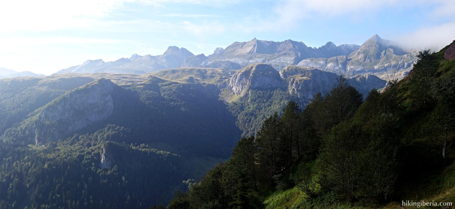 Forest of La Espelunguère