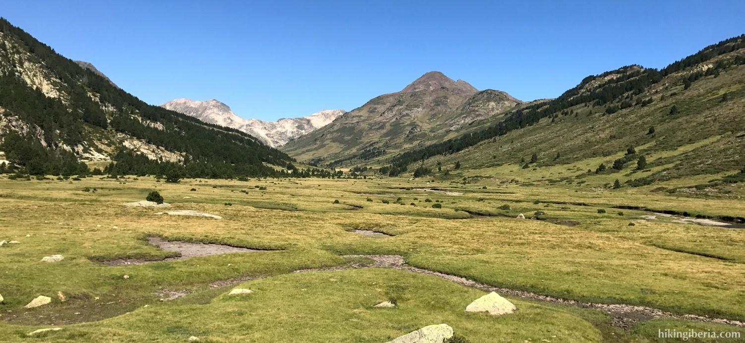 Green meadow near the GR-10