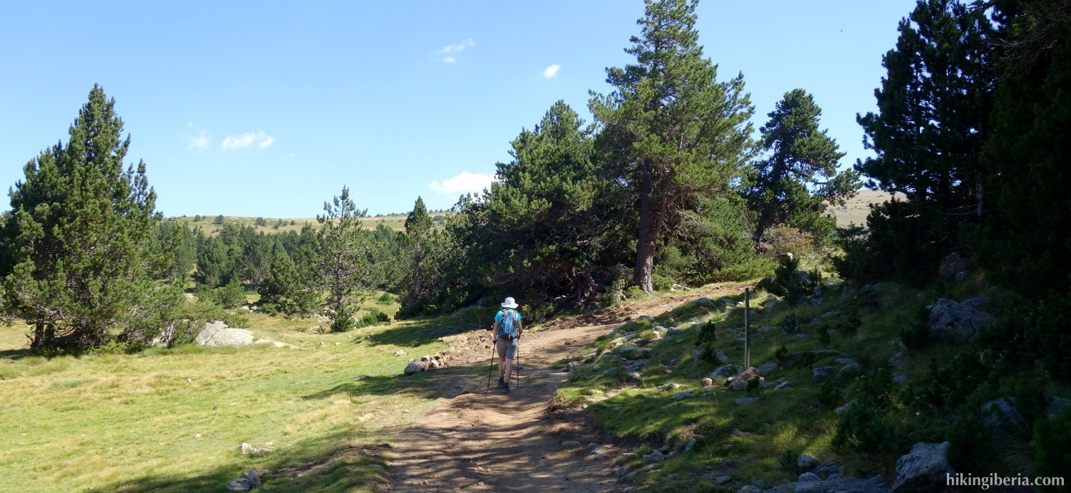 Pad vlakbij de Berghut van la Balmeta