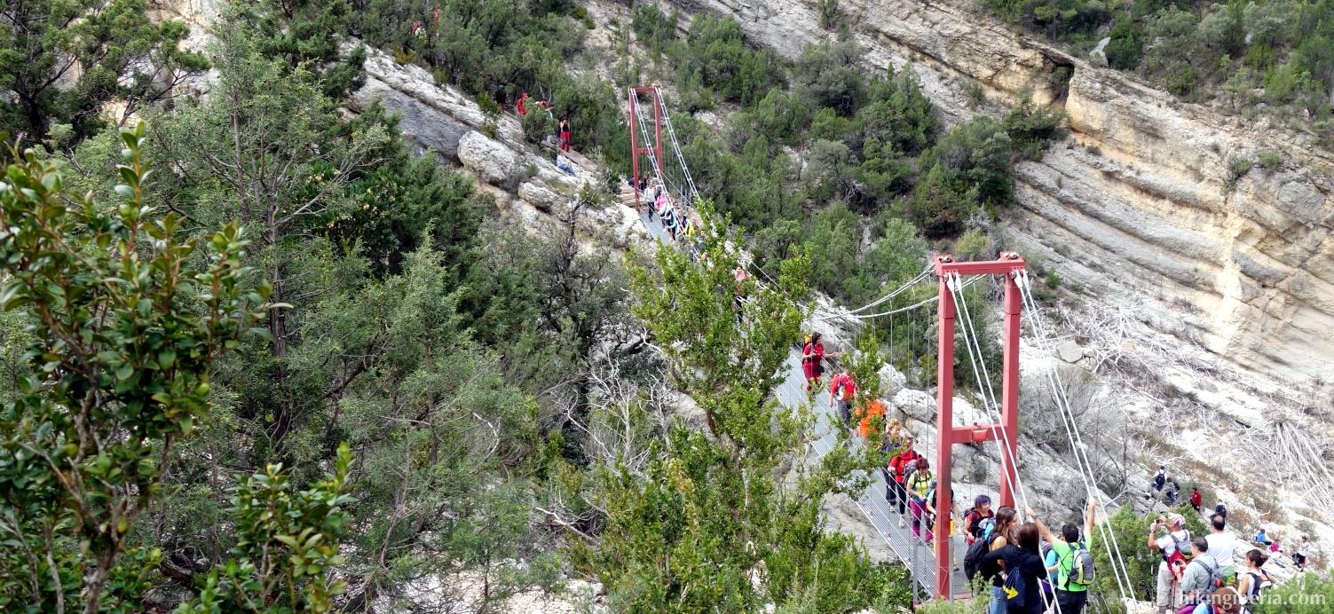Hangbrug over de Rivier Noguera Ribagorzana