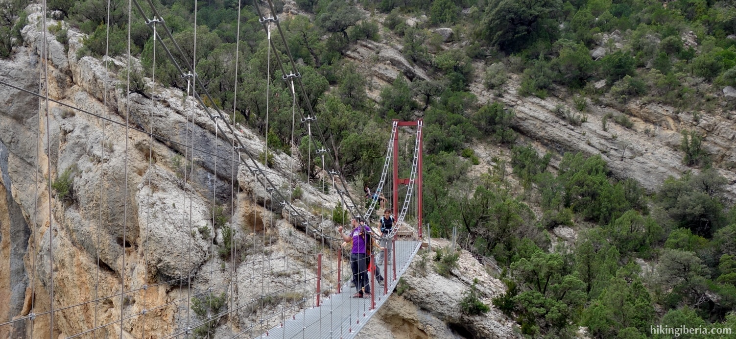 Suspension bridge over the River Noguera Ribagorzana