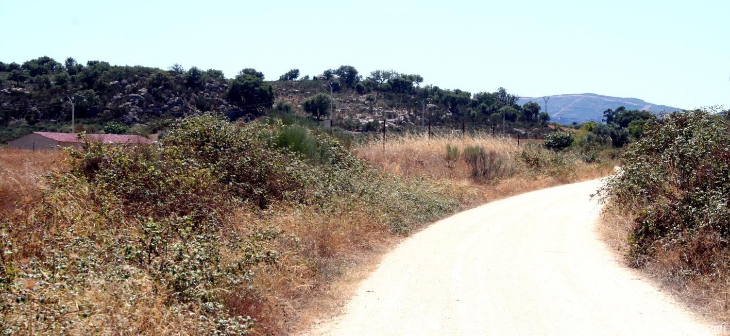 Trail ´Molino de la Negra´