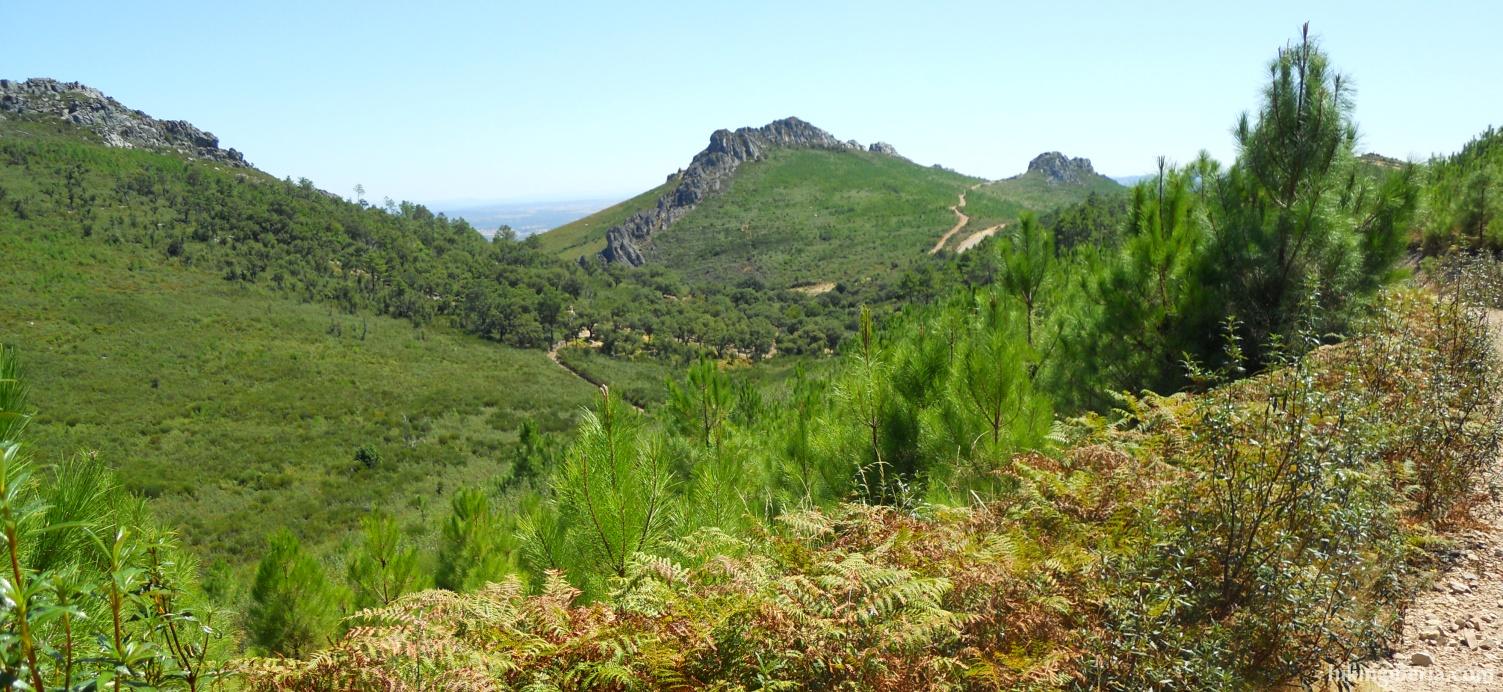 Trail on the Transfrontera