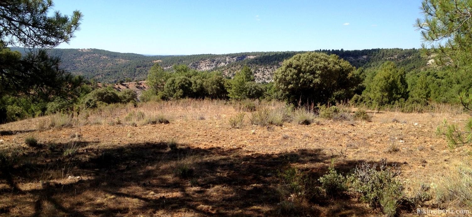 En lo alto del barranco del Arroyo del Peral