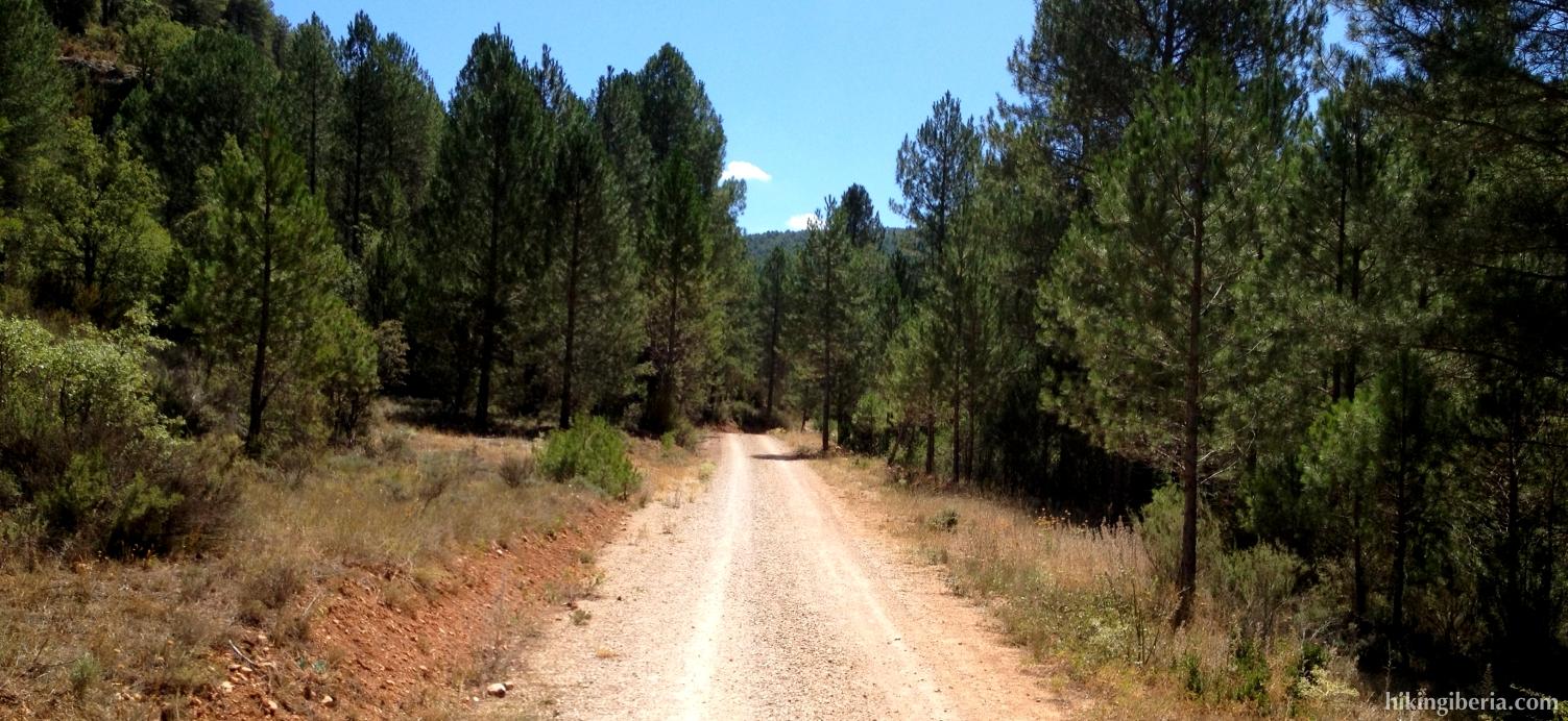 Senda a lo largo del Arroyo del Peral