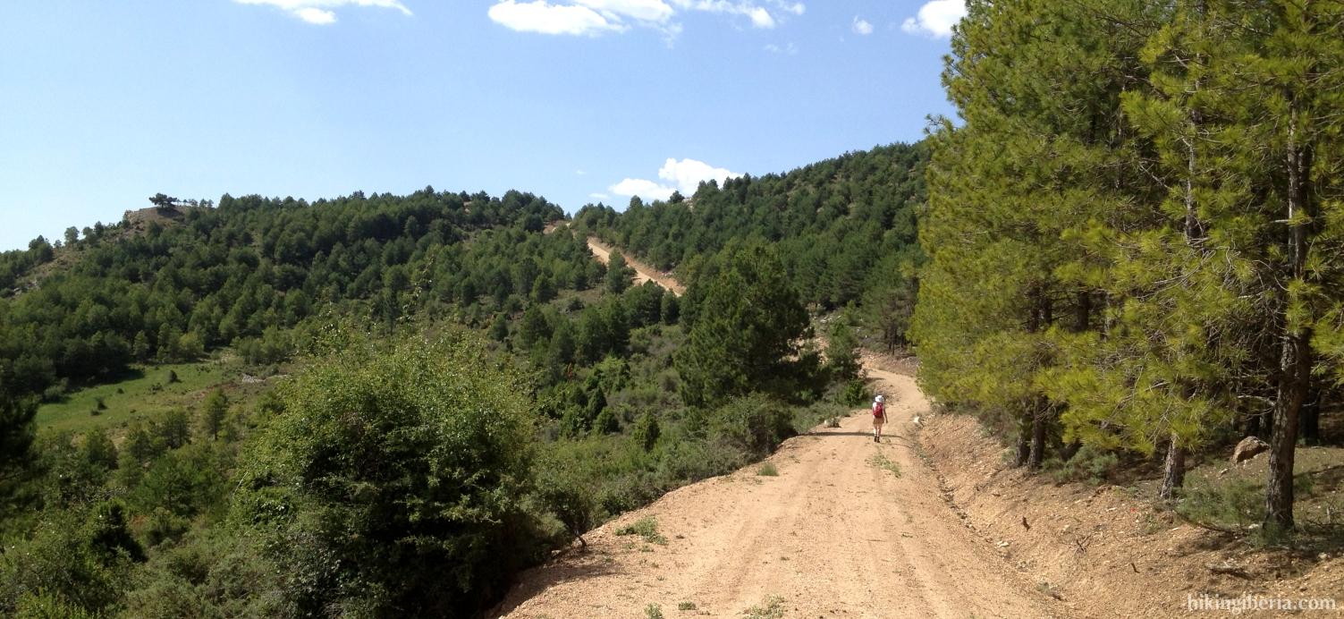 Ascenso desde el Barranco del Horcajo