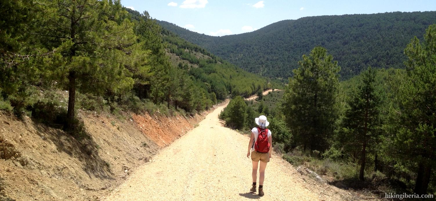 Trail near Huélamo