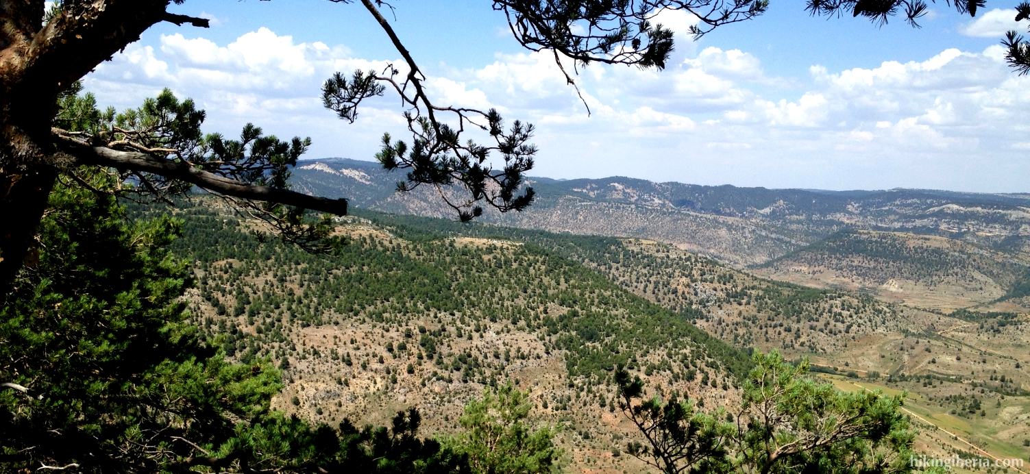 View from the Pico de las Nieves