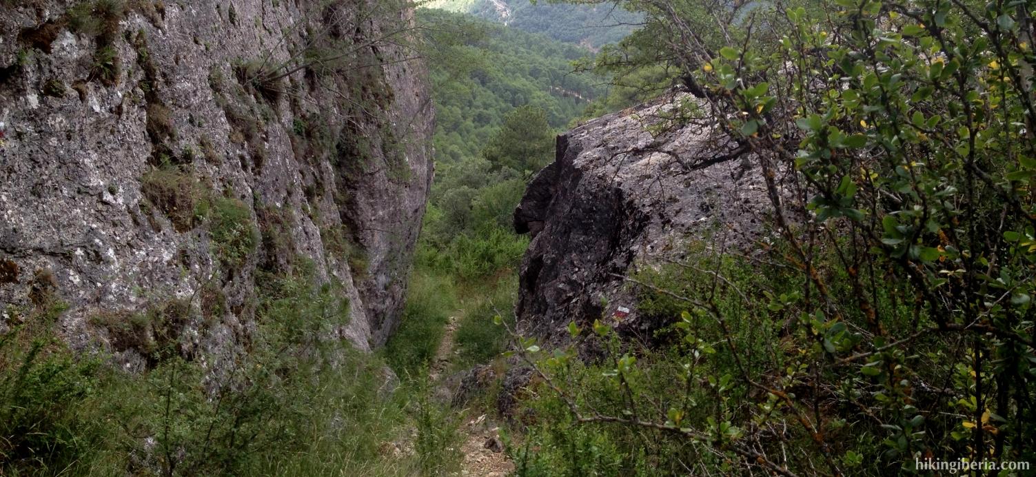 Camino de Fuente la Zarza