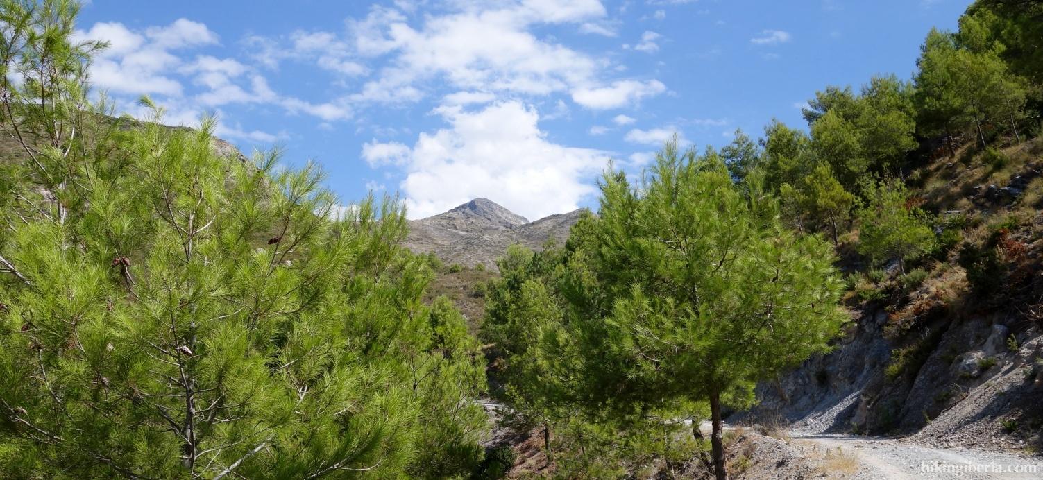 Path towards the Collado Romero