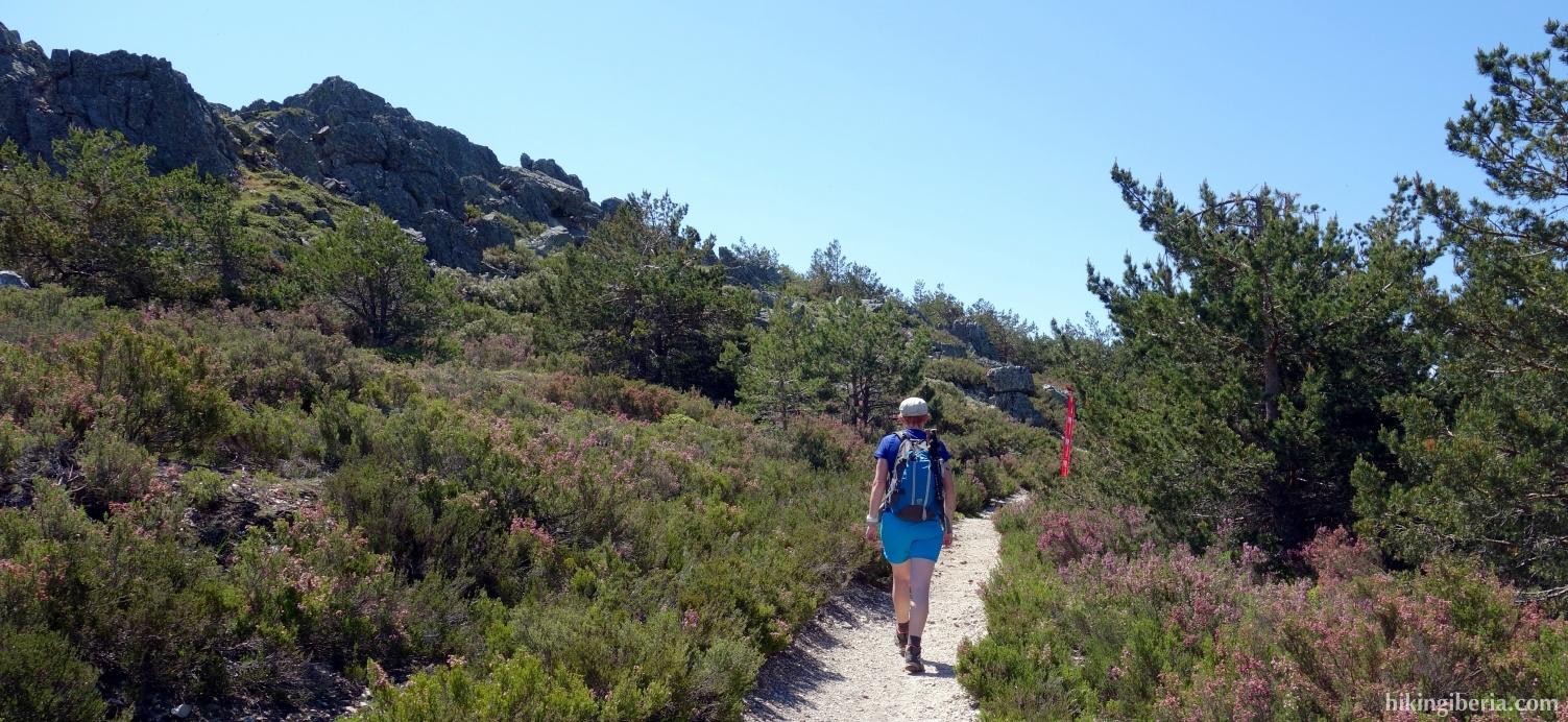 Trail to the Collado de los Lobos