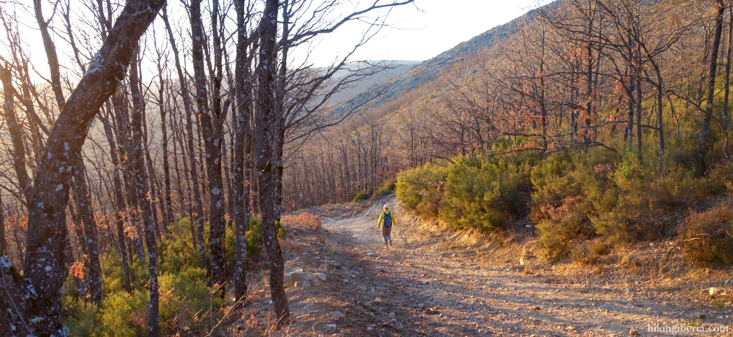 Pad naar El Cardoso de la Sierra