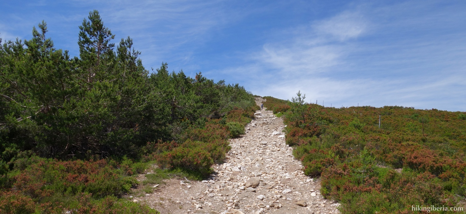 Trail on the Lomo de las Caseruelas