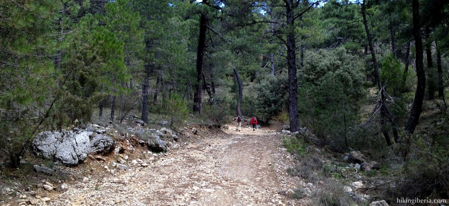 Trail near the Parador of Cazorla
