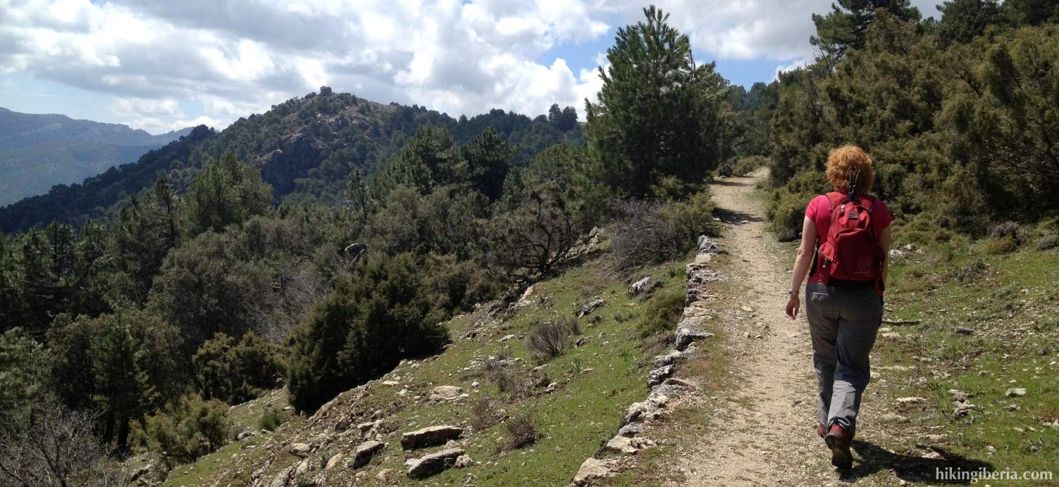 Trail towards the Puerto del Tejo