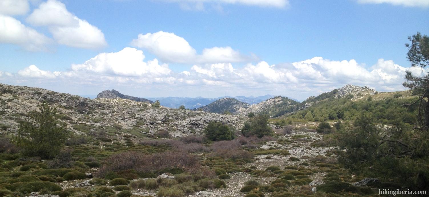 Vista desde la Loma de los Castellones