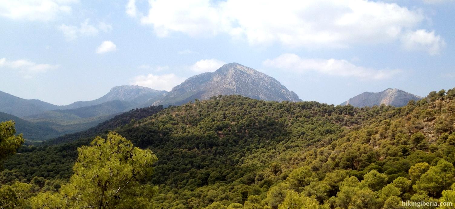 The Morrones of the Sierra Espuña