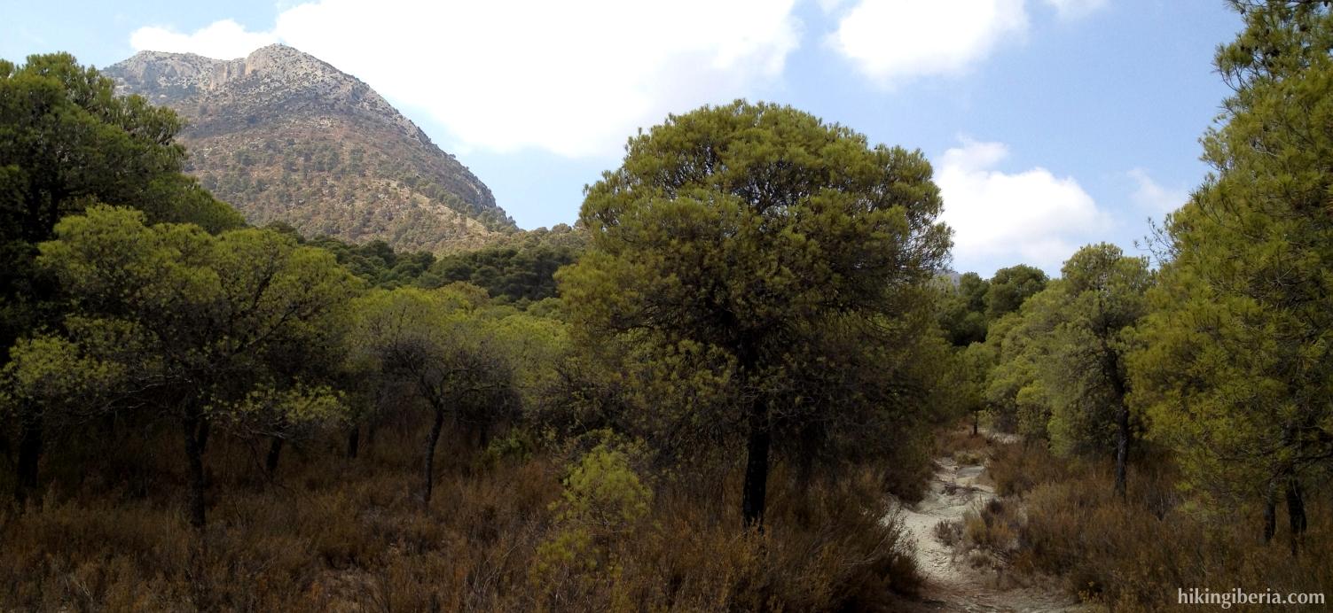 Path through the Barranco de las Brujas