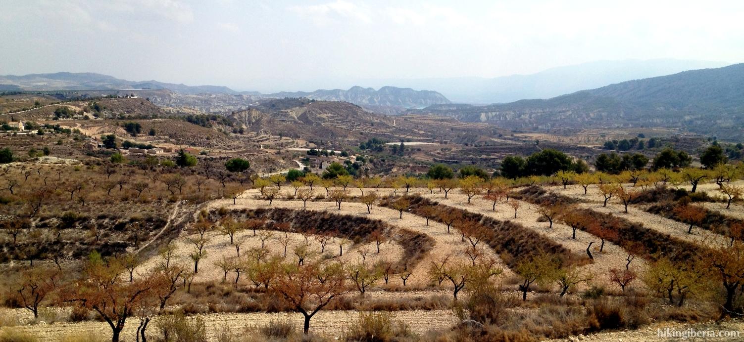 View on the Barrancos de Gebas