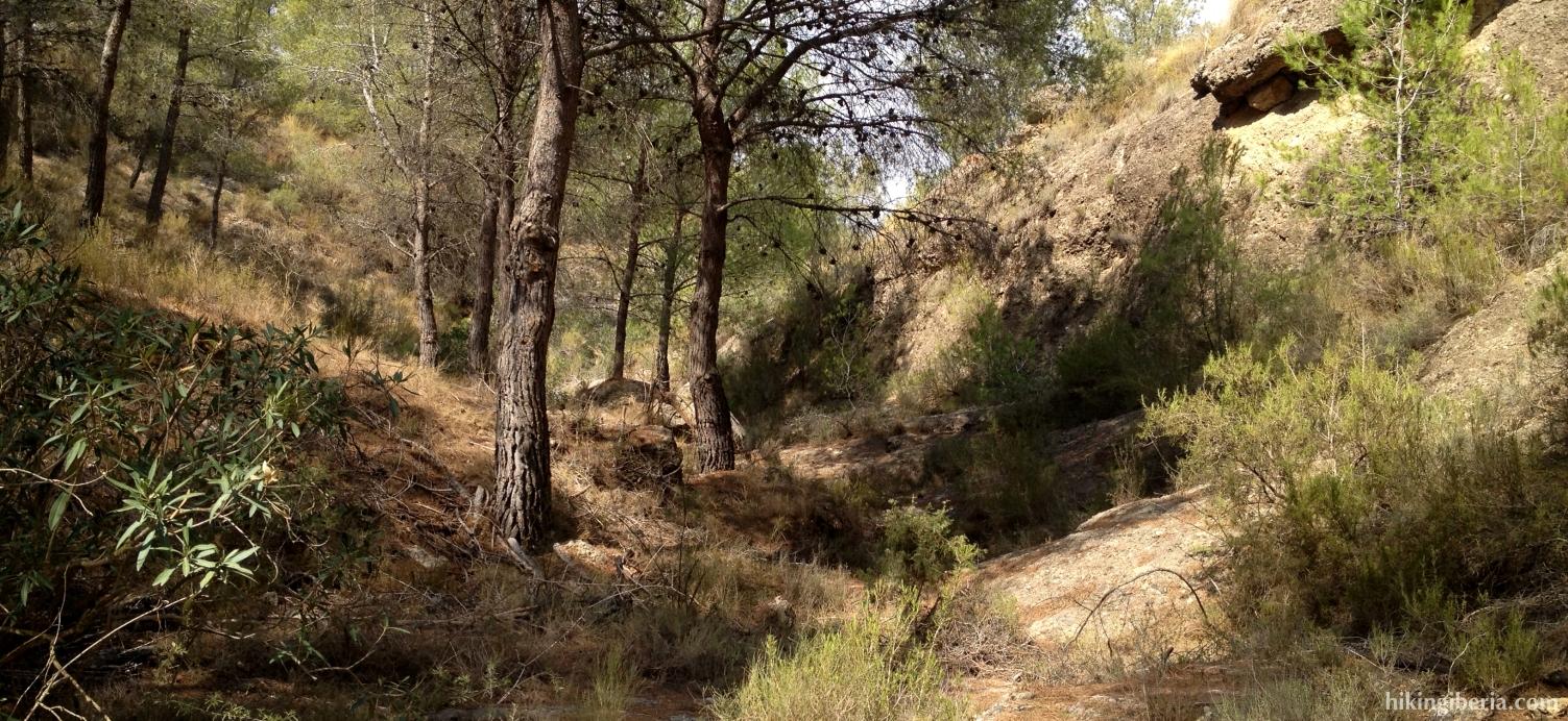Senda de la Cañada de la Sarna