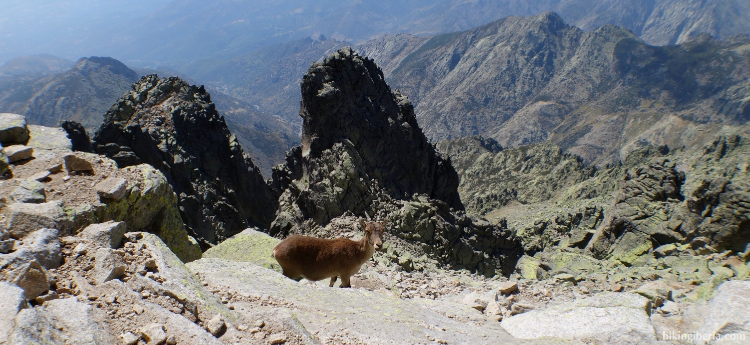 Uitzicht vanaf Almanzor