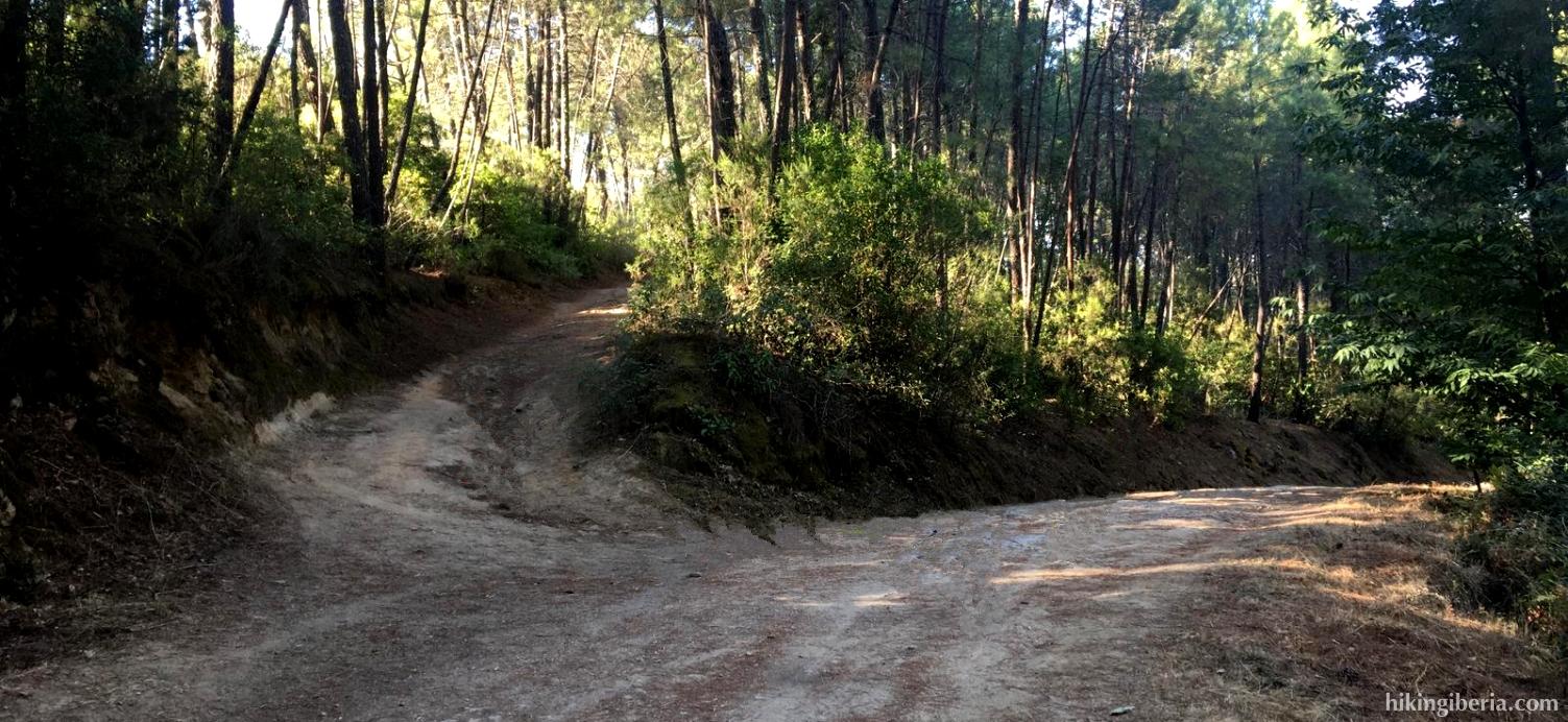 Path towards Cruz de la Tendera
