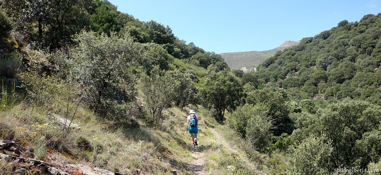 Path through the Barranco de Valdeherrera