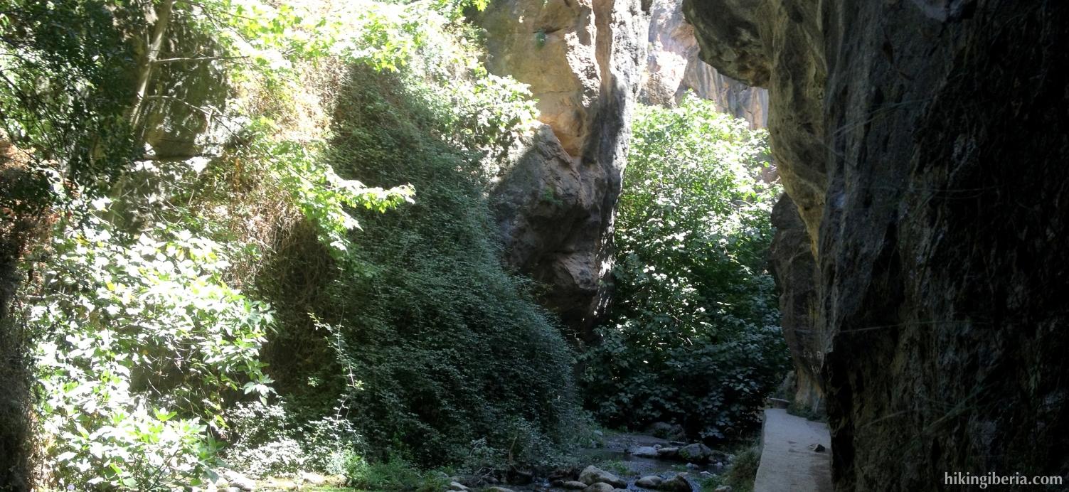 Trail through the Cahorros