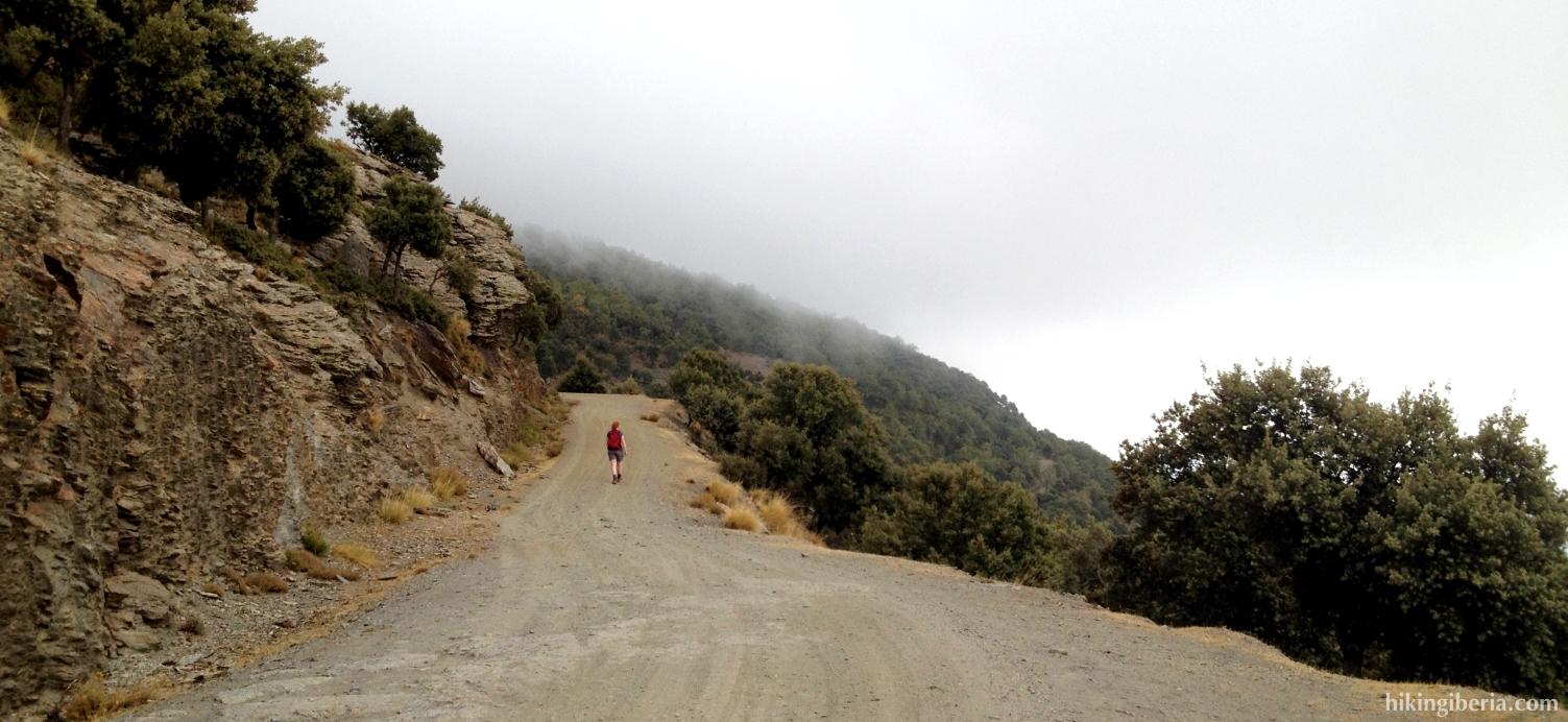 Weg nach der Loma de los Cotos