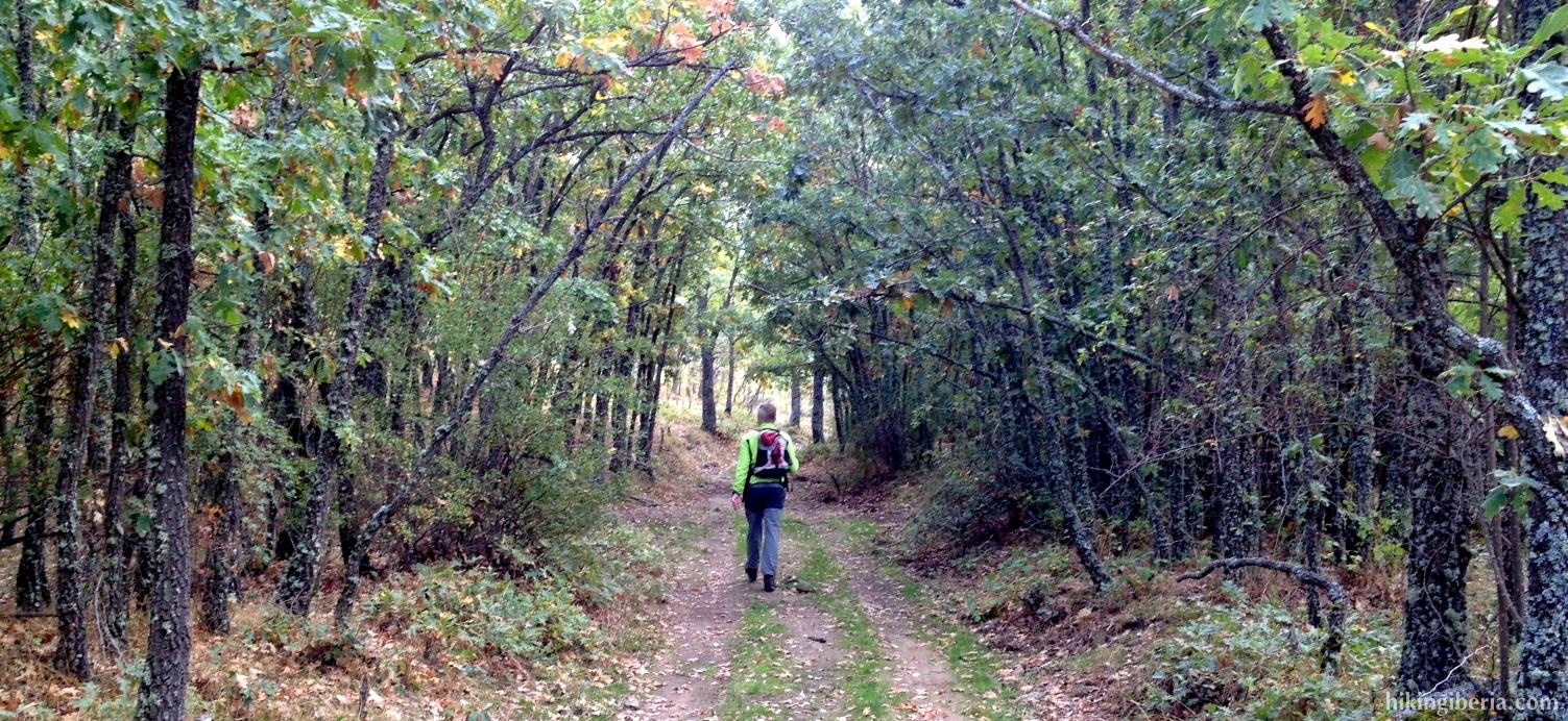 Pad aan het einde van de wandeling