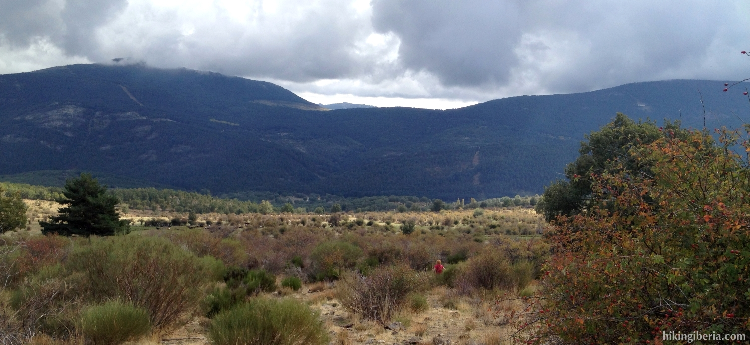 Pfad in der Nähe vom Collado del Hontanar