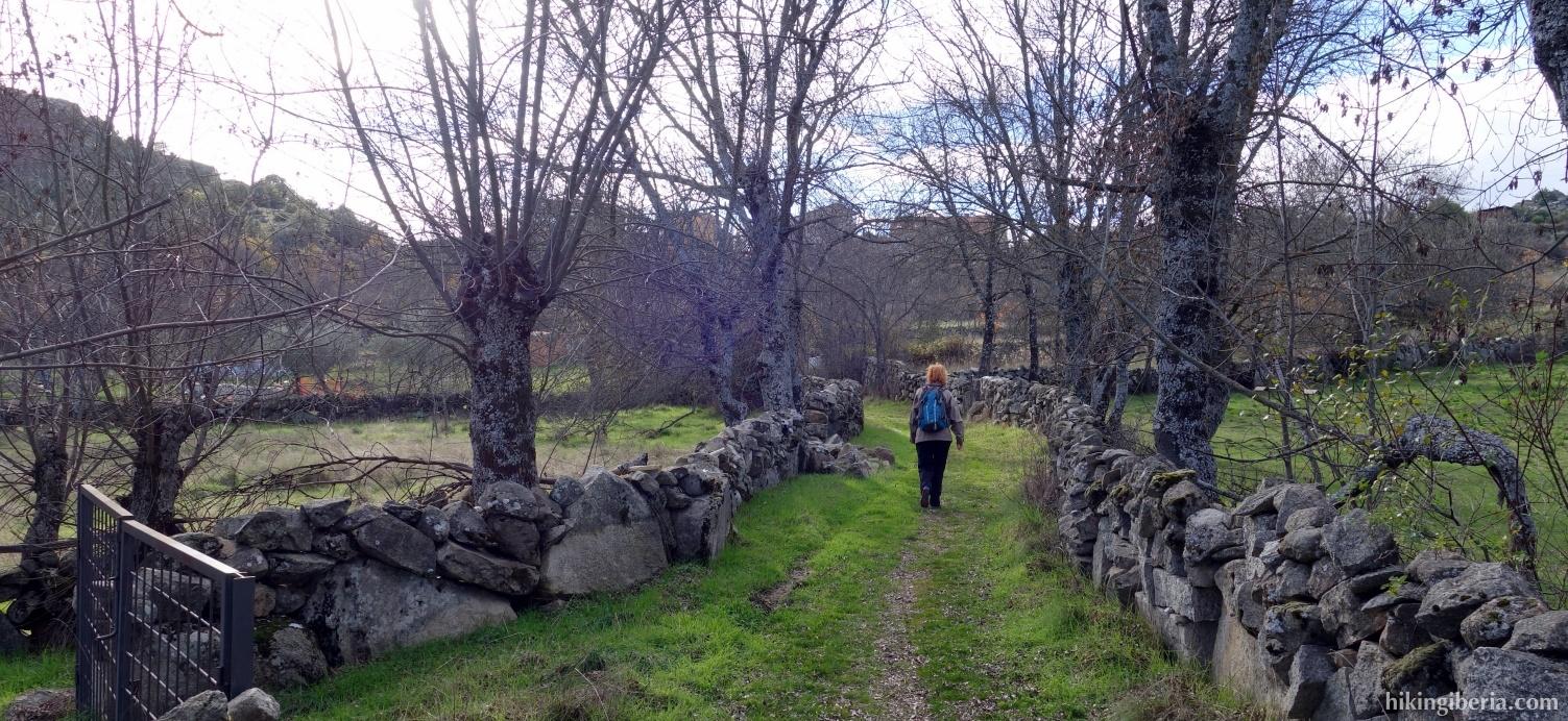 Trail towards El Berrueco