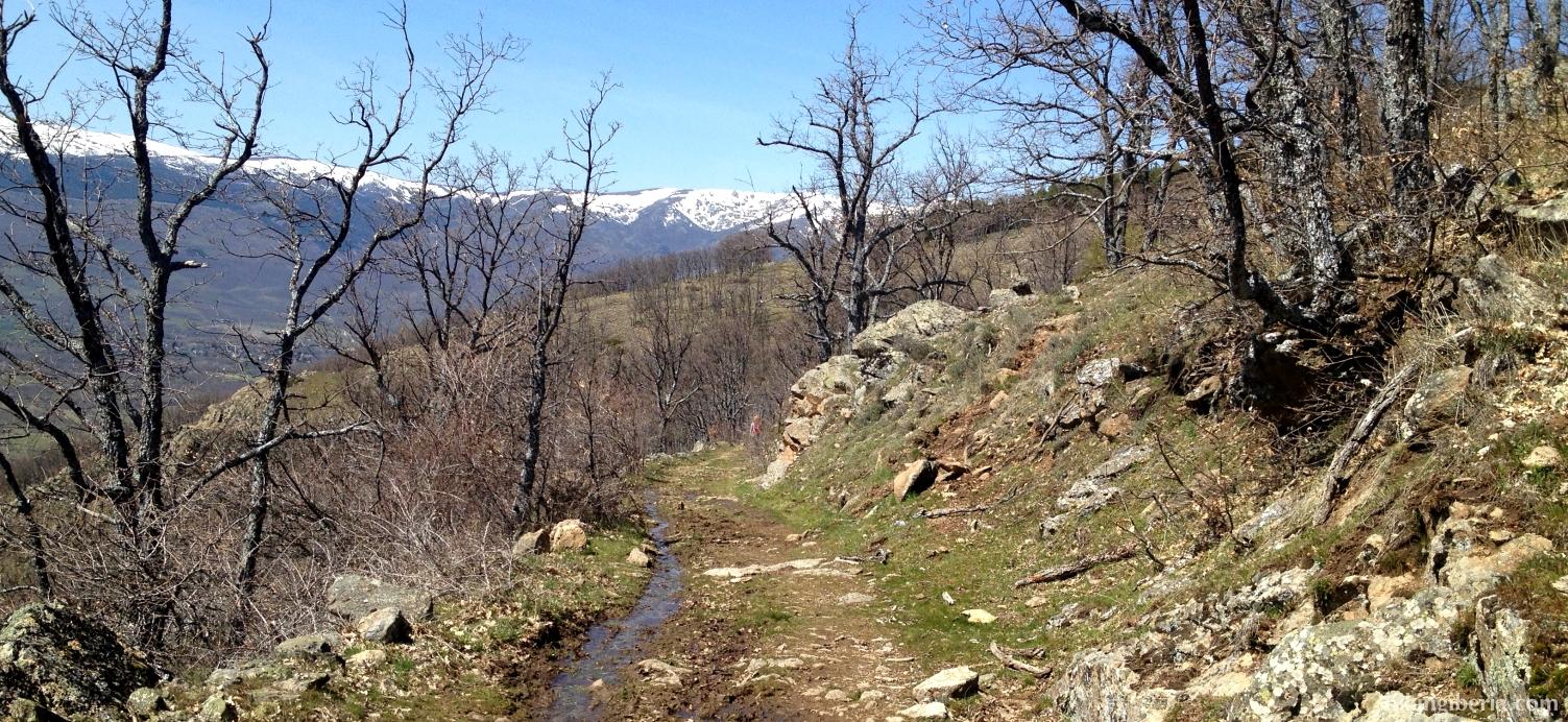 Camino hacia Alameda del Valle