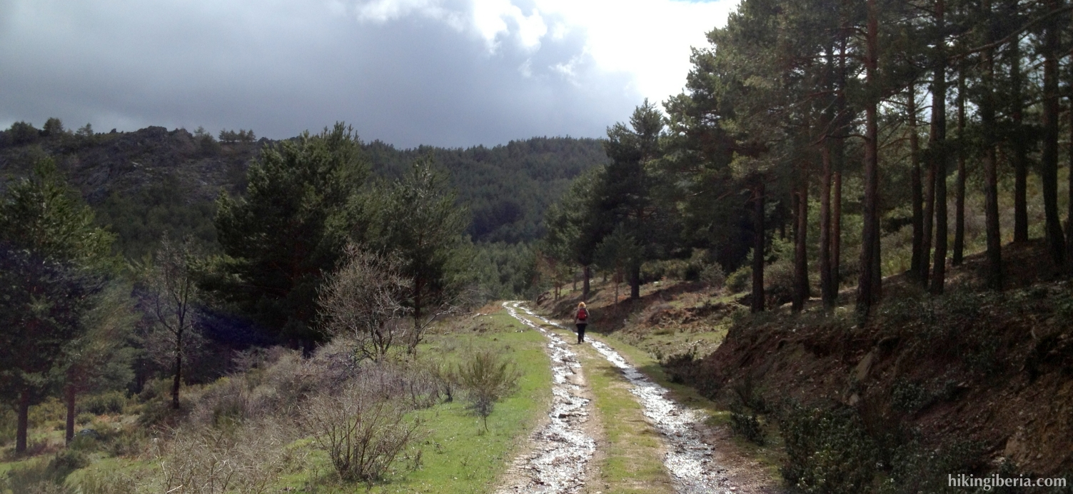 Trail on La Maleza