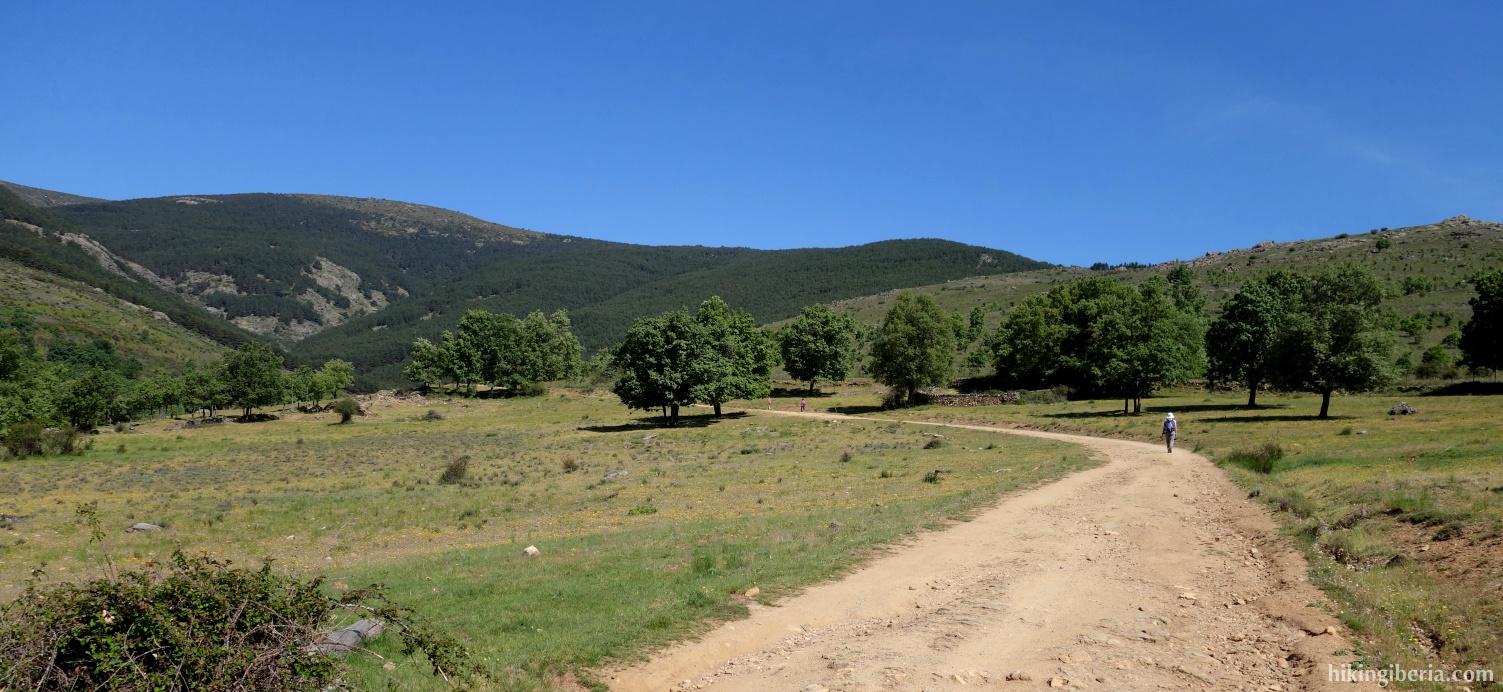 Trail on the Cerro Mocho